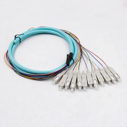$enCountryForm.capitalKeyWord NZ - SC OM3 12cores fanout fiber optic Pigtail SM simplex 12 core 1.5M Optical fiber pigtail  cord cable 12core color bunchy pigtail