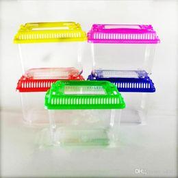 Wholesale Little Pet Rabbit House Mini Clear Hamster Cage Cute Transparent Plastic Goldfish Turtle Bowl With Portable Handle Many Colors 1 35jj ZZ