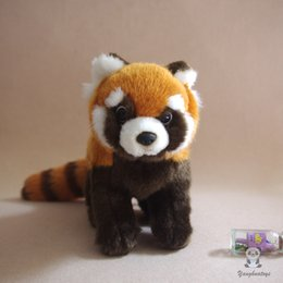 real good toys UK - Real Life Stuffed Red Panda Doll Child Toys Lovely Plush Raccoon Dolls Toys Birthday Present Good Quality