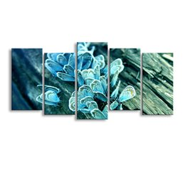 Butterfly Canvas Art UK - 5 pieces high-definition print butterfly canvas painting poster and wall art living room picture B-078