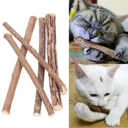 teeth sticks 2019 - 5pcs Kitty Molars Pure Natural Plant Shoots Cleaning Teeth Toothpaste Stick Suitable For Cat High Quality 1 6dx ff cheap