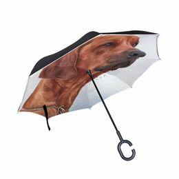 $enCountryForm.capitalKeyWord Australia - Rhodesian Ridgeback Dog Reverse Umbrella Windproof Double Layer Inverted Umbrella Self Stand Umbrella Rain Women