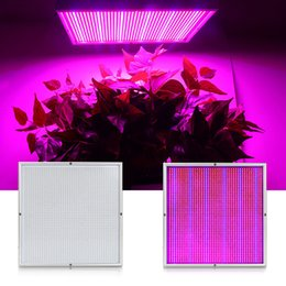 horticulture grow light NZ - 200W 85-265V High Power Led Grow Light For Plants Vegs Garden Horticulture and Hydroponics Grow  Flowering Growth Lamp