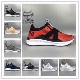 92e7864ca93 Cheap 2018 Ignite EvoKnit Lo 2 II Strap White Quarry Mens Women Running  Shoes Black White Crazy Runner designer Trainers Sneakers EUR 36-44