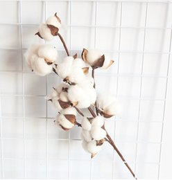 Wholesale cotton branches online shopping - Rustic Cotton Bolls Stem Country Farmhouse Style Rustic Floral for Home Decor Wedding heads Cotton Branch Spray Stalk Wedding Hotel Deco