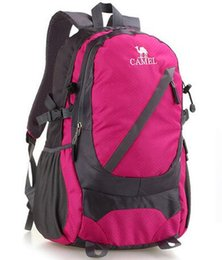 $enCountryForm.capitalKeyWord Australia - Wholesale 2018 NEW Quality Sports Backpack Hiking Brand CAMEL Camping Unisex Backpacks Teenager Schoolbag Basketball Bag 3pcs lot#25