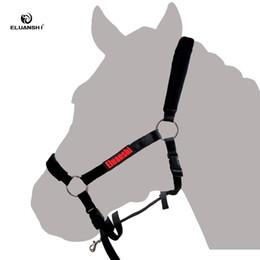 Textile Halfter-Set Reiten Pferderennen Sattelkissen Ausrüstung Paardensport Reitsport Reithose Halterschijven Chaps Nylon im Angebot