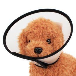 Pets medicine online shopping - Protective Ring Pet Dog Collars Leashes Cosmetology Take Shower Skin Disease Feeding Medicine Necessity Plastic Translucent White tt7 V