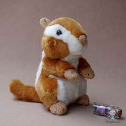 Chinese  Kids Toys Cute Chipmunk Doll Plush Toy Gifts Real Life Squirrel Dolls Stuffed Animals Good Quality manufacturers