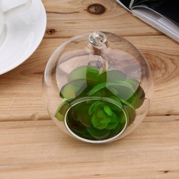 8 centimetri terrario di vetro rotonda 1 buco stand fiore pianta in vaso waterdrop appeso idroponica per auto decorazione ufficio di casa di nozze