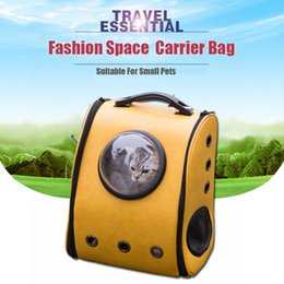 $enCountryForm.capitalKeyWord NZ - Space Cabin Breathable Cat backpack dog Outdoor portable Package bag cat bags Travel Dog Carrier