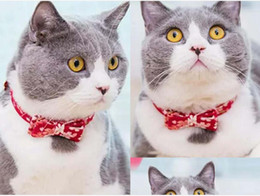 stereo cans 2019 - With Japanese style and stereo bow tie can be a pet cat collar hanging bell brand small cat and dog L062 cheap stereo ca