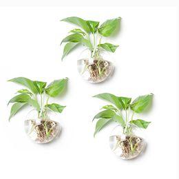 Live Indoor Plants Canada Best Selling Live Indoor Plants From Top
