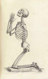 Halloween Decor Skeleton Australia - Human Skeleton on its Knees Praying Home Decor Wall Stickers Art Silk Poster 24x36inch 24x43inch