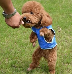 Blue Shirt For Wedding Australia - Blue Breathable Summer Dog Cooling Vest Coat Sleeveless Puppy Jacket Pet Clothes Clothing for Dogs T-shirt Coat XS S M L