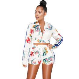 091dafb3073 Sexy Women Two Piece Set Hooded Long Sleeve Zipper Crop Top High Waist  Shorts Suits White 2018 Autumn Fashion Matching Sets
