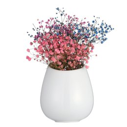 large ceramic vases 2019 - 6.3 Inches Tall Large White Plant Pot Wall Mounted Ceramic Vase for Dried Flower Indoor Planter for Succulent Living Wal