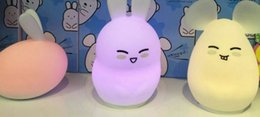 lighting gels Canada - Creative LED Colorful soft Silica gel toy animal Cartoon bunny Night light child bedroom bedside light table lamp USB charger remote control