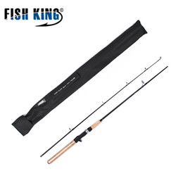 soft lure bait section 2018 - FISHKING Soft Bait Lure 5-25G Lure Weight Carbon 2 Section Spinning Rod 1.8m 2.1m 2.4m 2.7m 20-60LB Line Weight lure Fis