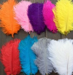 $enCountryForm.capitalKeyWord Australia - wholesale 100pcs lot 12-14inch Ostrich Feather Plume White,Royal bule,Black,Turquoise,Pink,Yellow Purple Red Ivory Gold Orange z134