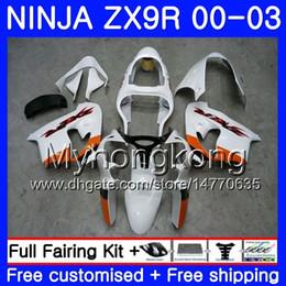 $enCountryForm.capitalKeyWord UK - Body For KAWASAKI NINJA ZX 9R 9 R ZX 900 ZX9R 00 01 02 03 216HM.23 ZX900 900CC ZX9 R ZX-9R Gloss white hot 2000 2001 2002 2003 Fairing Kit