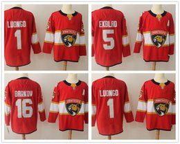 2ce1ad24edcc5 denmark new florida panthers jersey for sale 19e3e 2aef5
