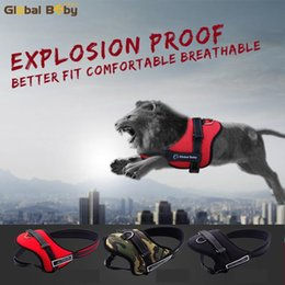 $enCountryForm.capitalKeyWord Canada - High Quality Soft Adjustable Protection Reflective Large Pet Vest Strap Medium Big Dog Harness and Matched Leashes