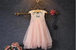 $enCountryForm.capitalKeyWord Canada - Retail Baby Girl Lace Tulle Princess Dress Kids Beaded Lace Gauze Dresses Girls Sleeveless Vest Dress Lovely Children Lace Net Yarn Skirt