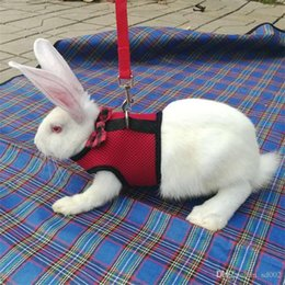 Discount chain leashes wholesale - New Pattern Rabbit Rope Adjustable Leashes Fashion Small Pets Chest Straps With Bow Red Blue High Grade 7qq Ww