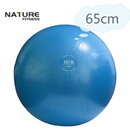 65cm Commerciale Gymnastic Fitness Pilates Balance Exercise Gym Fit Yoga Core Ball Indoor Fitness Training Yoga Ball Pompa gratuita on Sale