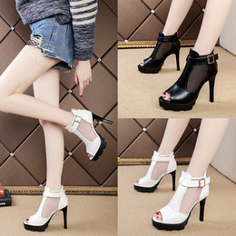 release dates very cheap Quality Assurance Fashion Women Sexy Net Cloth Party Shoes Imported Material Waterproof Taiwan High Heels Free Shipping buy cheap popular cheap sale latest collections sale online store oFzyRN
