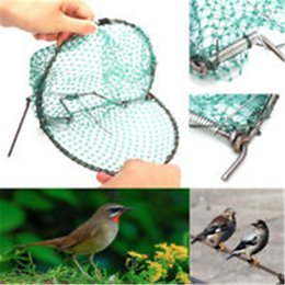Wholesale Bird Net efficace Humane Live Trap Hunting Sensitive Quail Humane Trapping Caccia Forniture da giardino Controllo dei parassiti