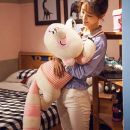 $enCountryForm.capitalKeyWord Canada - Dorimytrader Kawaii Soft Animal Raccoon Plush Toy Big Stuffed Cartoon Raccoons Doll Pillow for Kids Valentine Gift 31inch 80cm DY60222