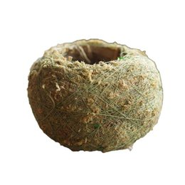Wholesale Caioffer Moss Terrarium Handmade Flower Pot Ball Shapes Maceta Bonsai Pots Planter Vertical Garden Decoration Cxb14