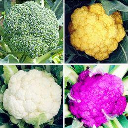 Vegetable Seeds Broccoli UK - 50 Pcs Bag Cauliflower (Broccoli) Seeds Green Cauliflower Organic Health Vegetables Plant For Home & Garden Easy To Plant