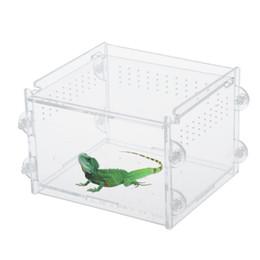 Акриловые рептилии террариум контейнер идеально подходит для рептилий или амфибий личинки пауков муравьи Скорпионы Хамелеон ящерица