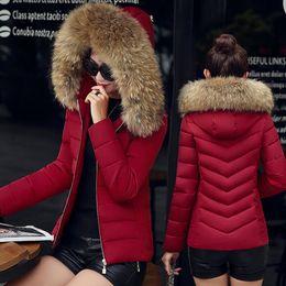 $enCountryForm.capitalKeyWord Canada - Fashion Down Winter Jacket Women Hooded Cotton parkas womens warm jackets Winter plus size Coat With Big Fur Hoody Cheap Short Parkas M-4XL