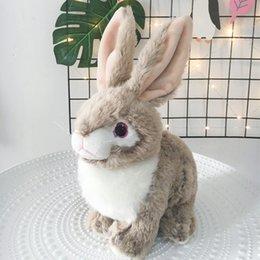 $enCountryForm.capitalKeyWord NZ - 25cm Soft Simulation Rabbit Plush Toys Cute Brown Gray Hare Bunny Plush Doll Hare Stuffed Toy Gifts for Children LA0005