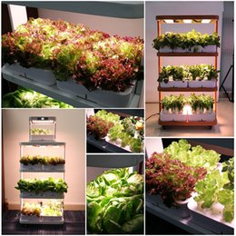 $enCountryForm.capitalKeyWord NZ - home used hydroponic growing systems smart mini garden planter vertical garden systems new grow lights Indoor Plant Lighting