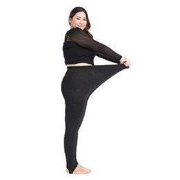 1575ea9d7 Plus Size Thick Tights Online | Plus Size Thick Tights Online en ...