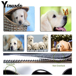 small keyboards NZ - Yinuoda White labrador dog Keyboard Gaming MousePads Size for 18x22cm 25x29cm Small Mousepad