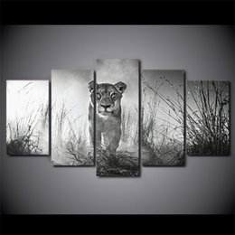 art canvas prints Australia - 5 Piece Canvas Art HD Print Home Decor lioness female Paintings For Living Room Wall Poster Picture Free Shipping UP-2301C