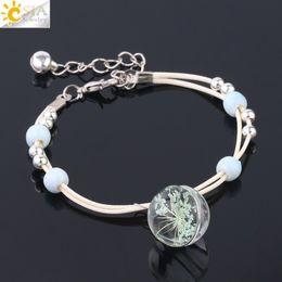 Ball Bracelets NZ - CSJA Glass Crystal Ball Girls Jewelry Dried Flower Charms Bracelets Handmade Natural Gypsophila Bracelet Adjustable Female Jewellery F598
