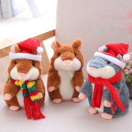 Baby Hamsters Online Shopping | Baby Hamsters for Sale