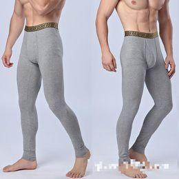 ffc40e04ba1 Wholesale The New Chenke365 Mens Cotton Pants Warm Cotton Long Underwear  Factory Phnom Penh Thermal Men