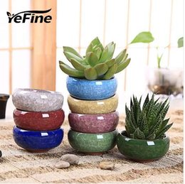 Small Bonsai Pots Nz Buy New Small Bonsai Pots Online From Best