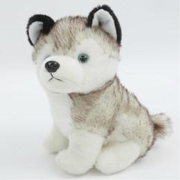 Dog christmas presents online shopping - soft Hamtoys Kawaii CM Simulation Husky Dog Plush Toy Gift For Kids Baby Toy Birthday Present Stuffed Plush Toy Children Boy Girl