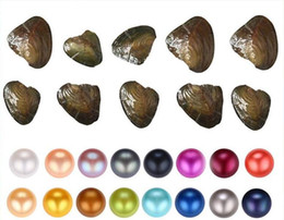 pearl oyster shell wholesale UK - Fancy Gift Akoya pearl cheap love freshwater shell pearl oyster 6-7mm pearl oyster with vacuum packaging 31colors
