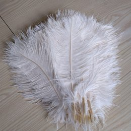 Feather Party Decorations Australia - Prefect Natural Ostrich Feather Pure White 12-14 inch Wedding Decoration table Centerpieces weeding centerpiece decor party supply z134