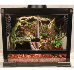 Reptile Terrarium Nz Buy New Reptile Terrarium Online From Best